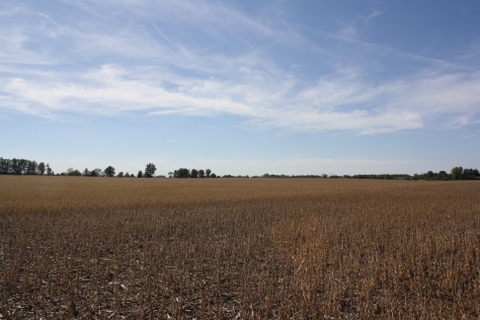 107 Acres SOLD at Auction $8,100/Acre